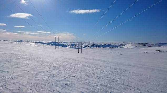 Bilder av linje i solskinn på Magerøya.